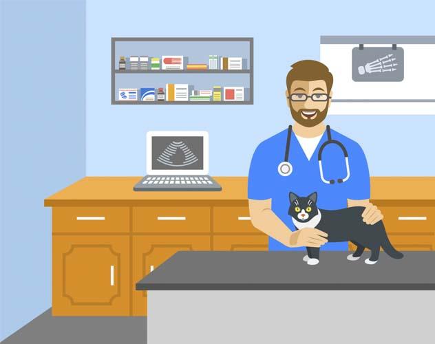 ペット医療